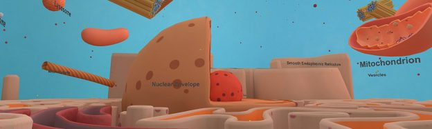 Teaching animal cell structure in VR