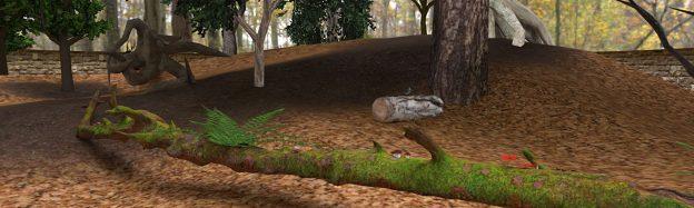 Teaching forest floor in VR