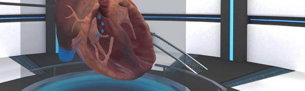Teaching human heart biology in VR