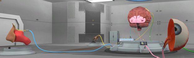 Teaching human senses in VR