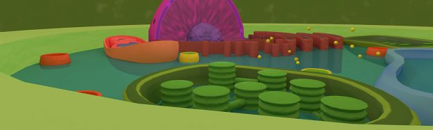 Teaching biology plant cells in VR