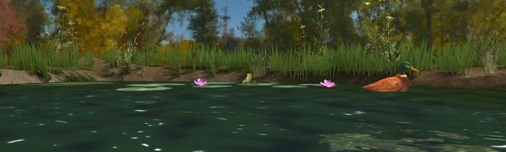 Teaching Pond Life in VR