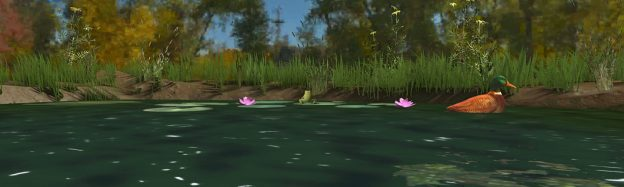 Teaching Pond Life in VR