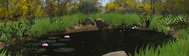 Teaching pond waterlife in VR
